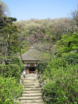 Kamakura_myougetuin003
