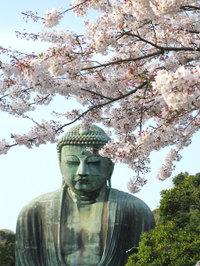 Kamakura_daibutsu001_3