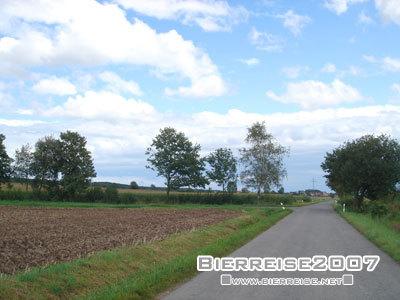 Amp_grass_weg4