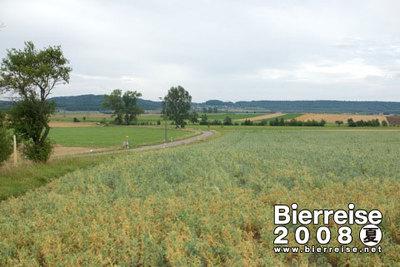 Steinfeld_landwehr019