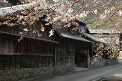 hanazawa