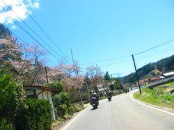 Kunimi_soma_001