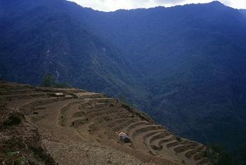 Nepal001