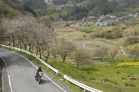 Spring_01_april_001