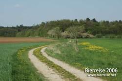 Bamberg_geisfeld4