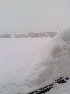 今週は雪の新潟