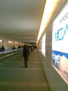 なう羽田空港