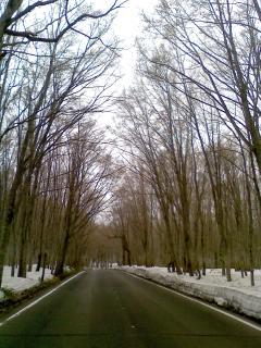 十和田はまだ雪